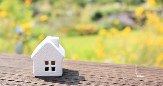花と緑の家